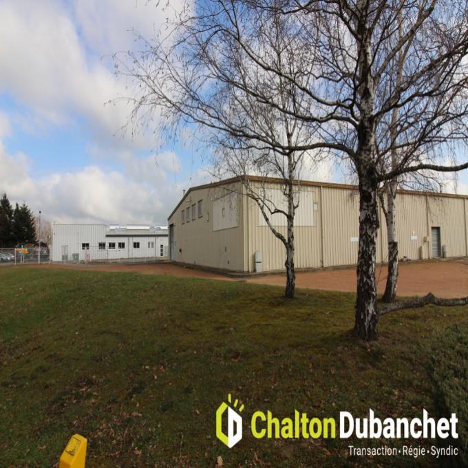 Location Immobilier Professionnel Local d'activité roanne (42300)